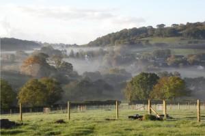 Little Park Alpaca Farm rural training location